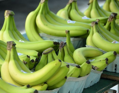 Green Bananas Background