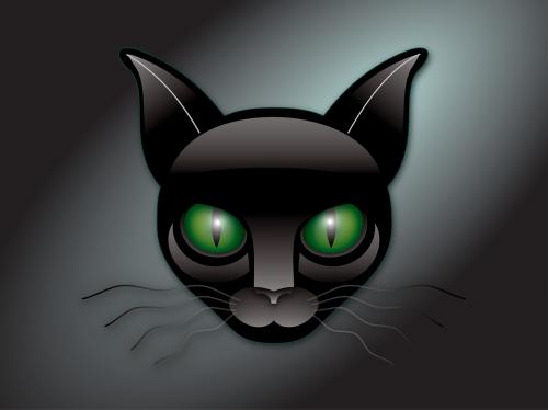 green eyes kitty cat