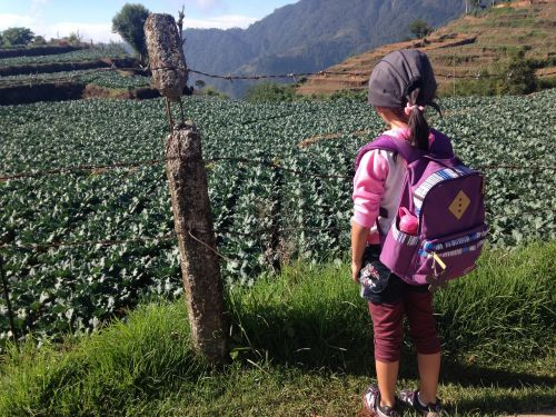 green fields,kid travel,girl traveler,travel,little girl travel,girl travel