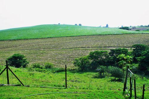 Green Hills Of Kwa-zulu Natal