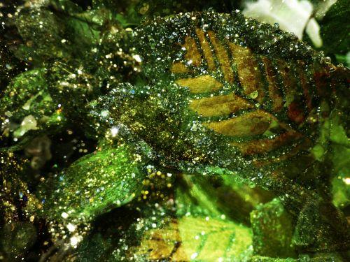 Green Leaf Glitter Background