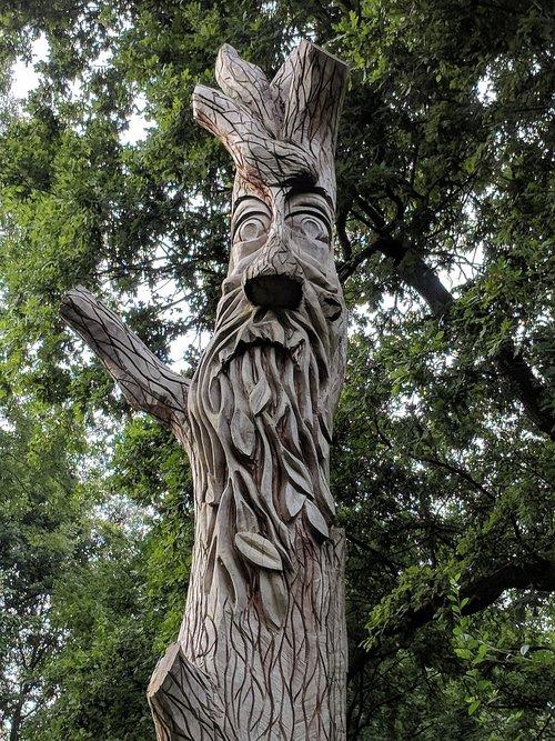 green man  tree  face