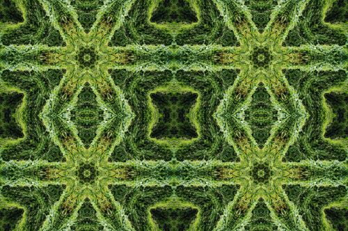Green Manipulated Reality