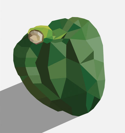 green peppers peppers large green illustrations pepper big polygon