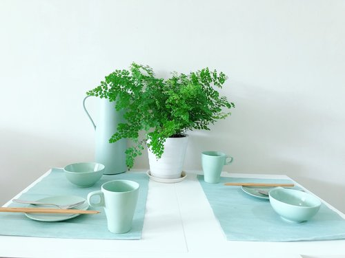 green plants  household  nordic wind