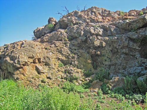 augmenija, augalai, žalias, akmenys, kalnas, gamta, žalia augmenija prie kalno papėdėje