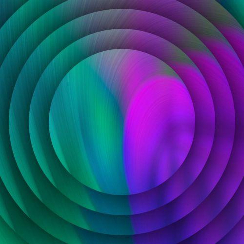 Green Violet Discs