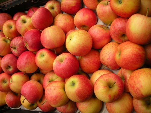 greengrocer fruit crate apples