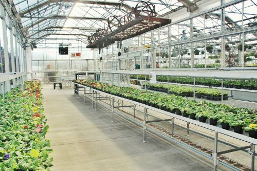 greenhouse industry business