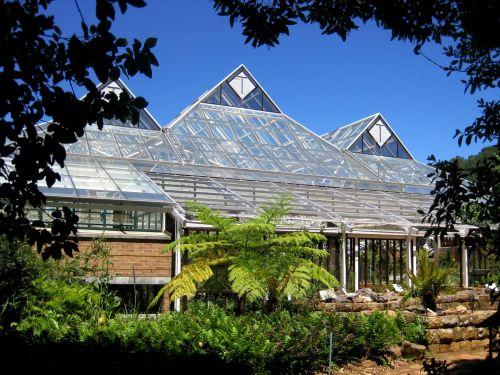 Greenhouse At Kirstenbosch