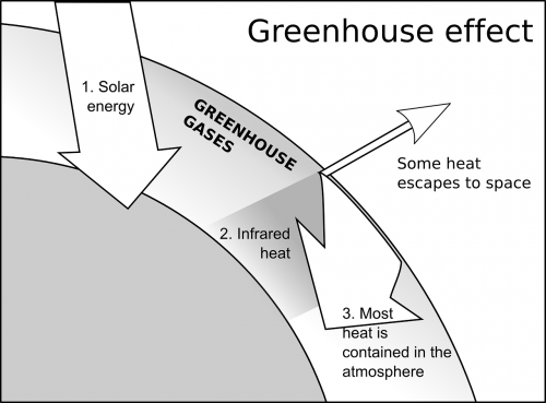 greenhouse effect ecology scheme