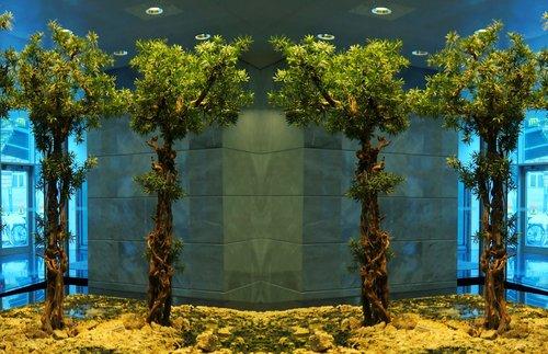 greening  tree  indoor green