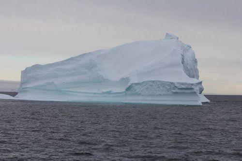 greenland iceberg water