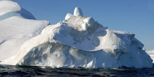 greenland iceberg ice