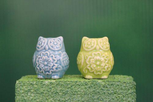 Greenscreen: Owls S&P Shakers