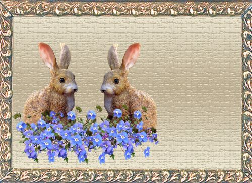 greeting card rabbits blue flowers