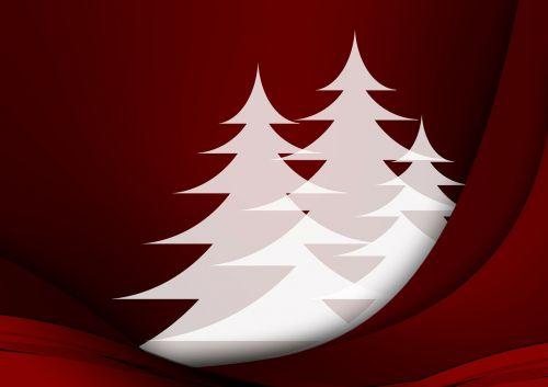 greeting card fir trees christmas