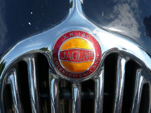 grille jaguar emblem