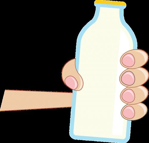groceries grocery milk