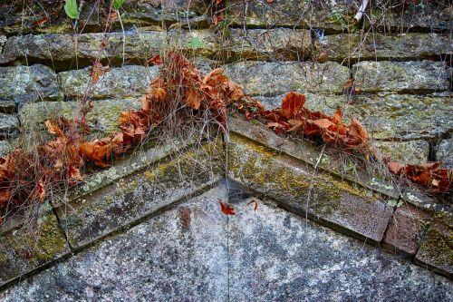 grotto stones ledge