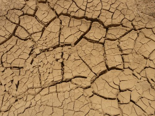 ground dry parched