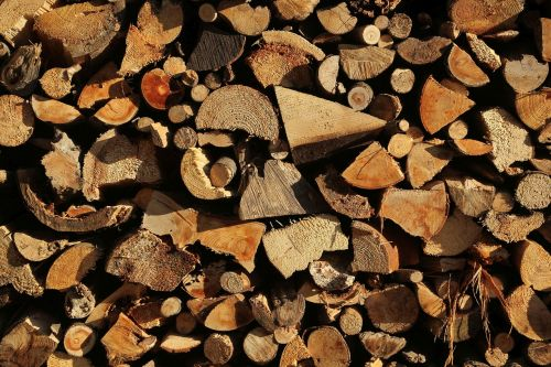 growing stock wood holzstapel