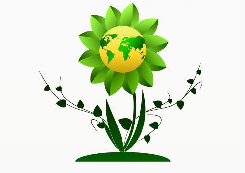 growth flower earth