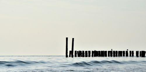 sea poles wood