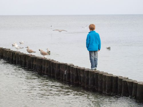 groynes child sea