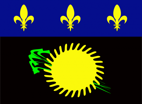 guadeloupe flag,flag,heraldry,unofficial flag,black guadeloupe flag,free vector graphics