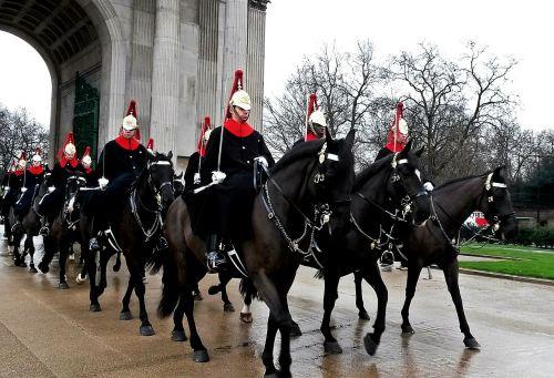 guard horses military