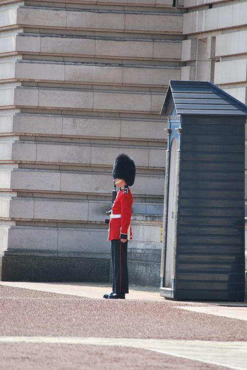guard royal buckingham
