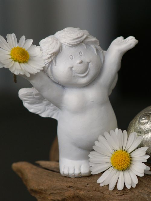 guardian angel daisy cheerful