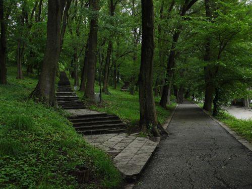 guidance footpath wood