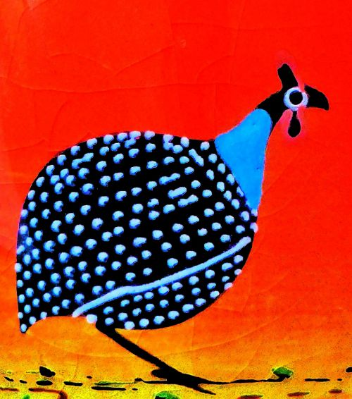 guinea fowl drawing colorful