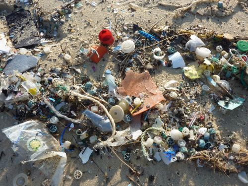 guise,plastmasinis,atliekos,jūra,Mare,tarša,kranto,ufer,kryptis,aplinka,aplinka