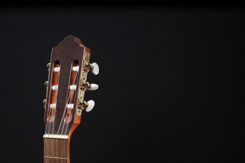 guitar musical instrument instrument