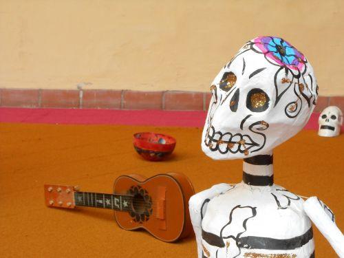 guitar instrument skull of carton