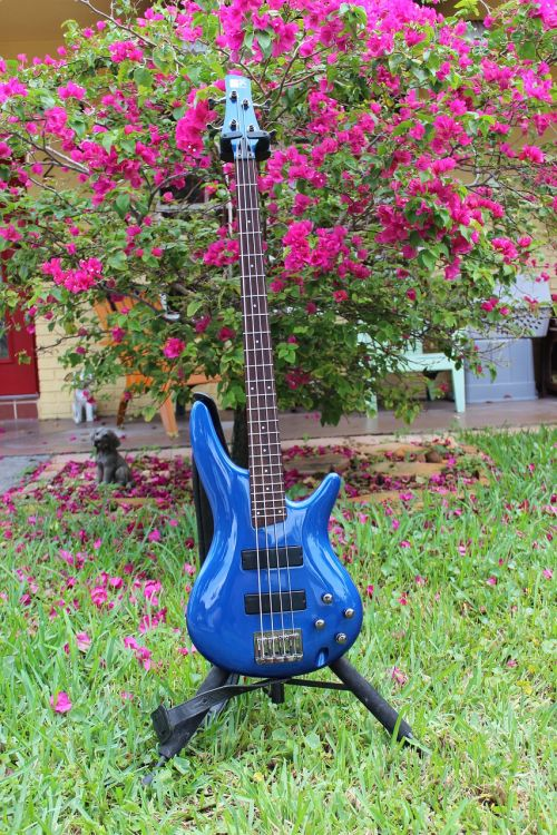 guitar blue guitar electric guitar