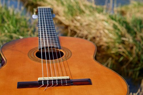 guitar musical instrument stringed instrument