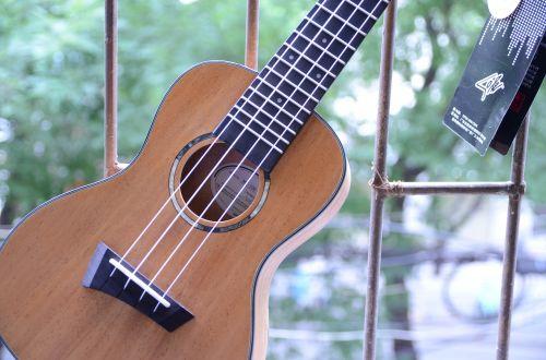 guitar hobby songs