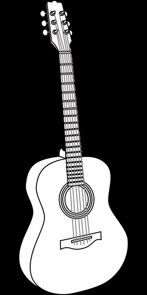 guitar acoustic concert