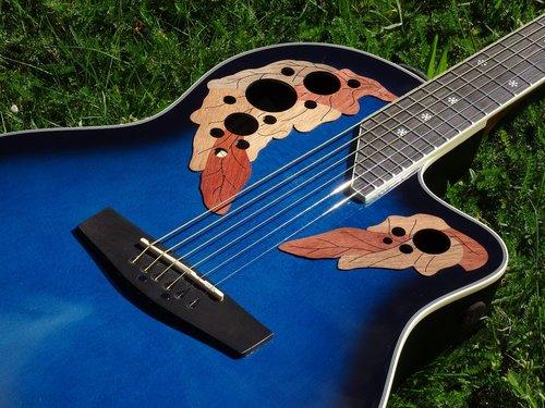 guitar  ornament  round back
