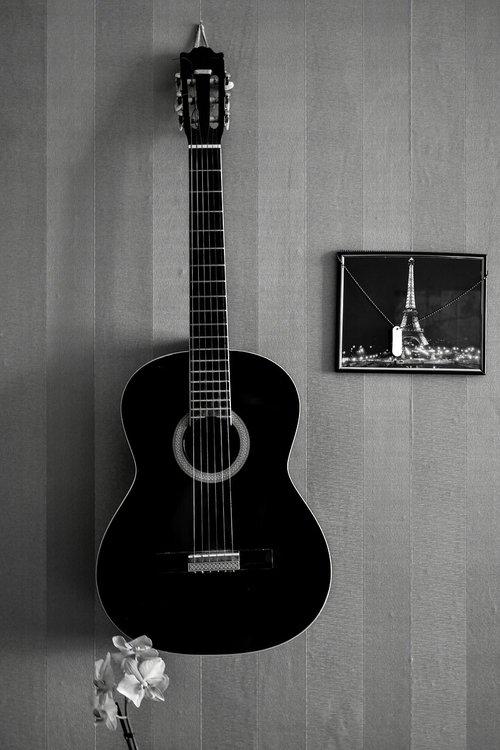 guitar  interior  strings