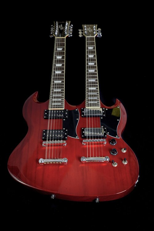 guitar  double neck  electric guitar