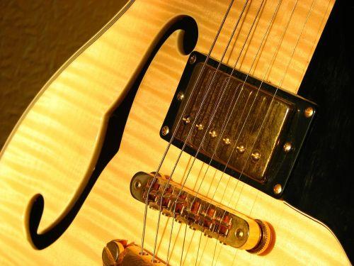 guitar sonar f-hole
