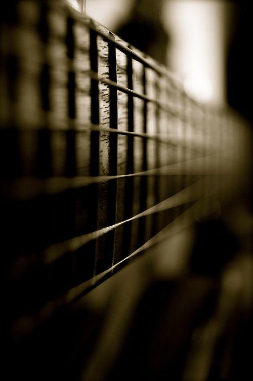 guitar instrument strings