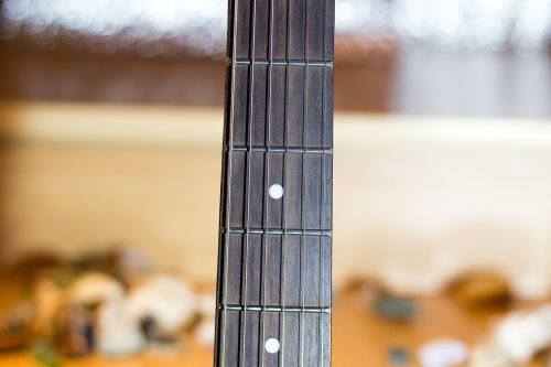 guitar neck vulture strings