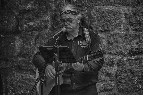 guitarist singer musician