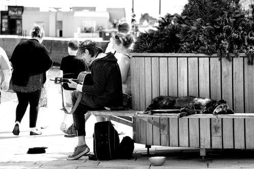 Guitarist Of The Street